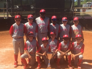 Elite Gamers 10U 2016